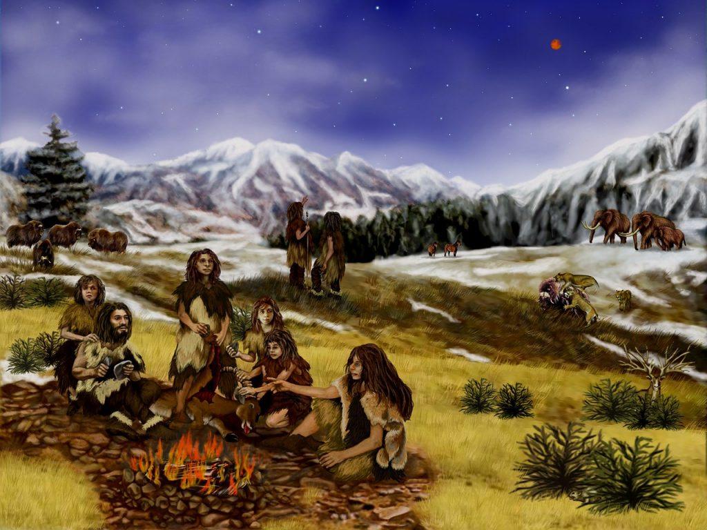 trib in natura munti copaci campie