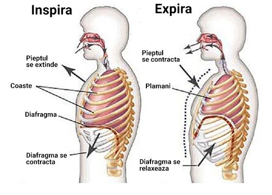 Schema exercitiu respiratie