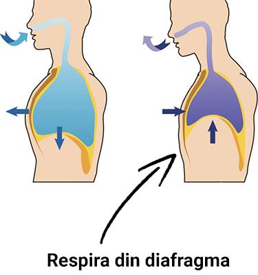 Cum sa respiri din diafragma ca sa termini mai greu