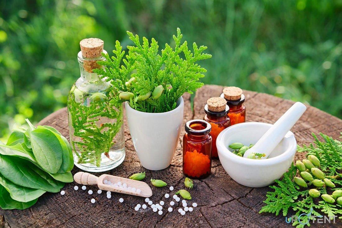 tratament pe bază de plante disfuncție erectilă